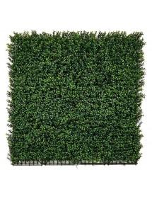Plancha Jardín Vertical Boj 100x100cm CATRAL
