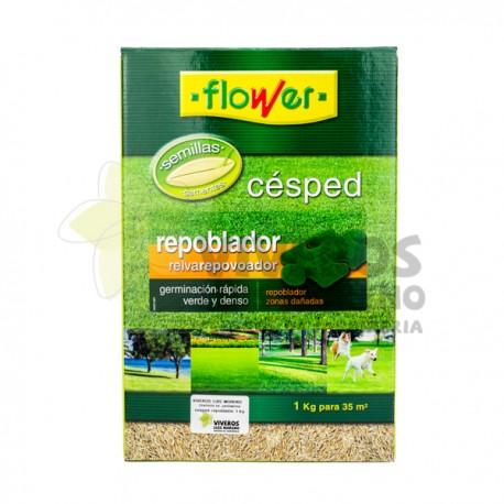 Semillas Césped Repoblador 1KG Flower