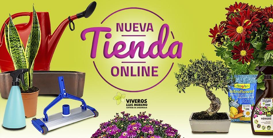 Nueva Tienda Online